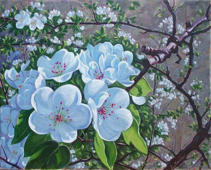 Plum blossoms - Paintings by Lorenc Seseri