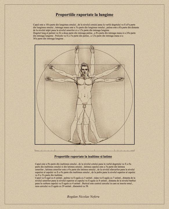 Vitruvian Man - Human proportions