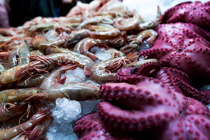 Seafood Feast - Si Glogiewicz Photography