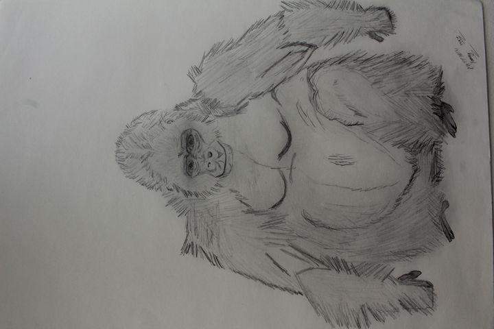 Ape - MR.Y