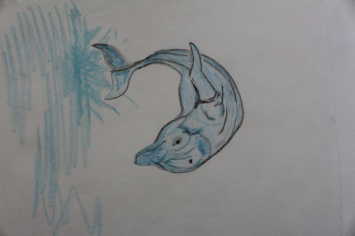 Blue Dolphin - MR.Y