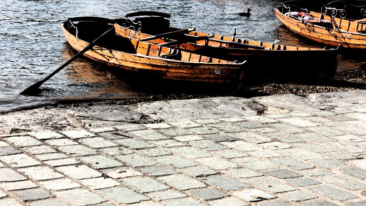 Rowboats - ArtBolt
