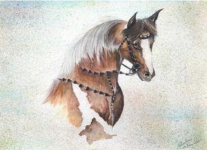 horse the pride