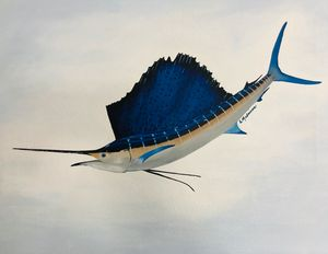 Sailfish on Canvas