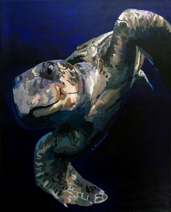 Sea Turtle swimming in deep waters - Medeiros Art Gallery