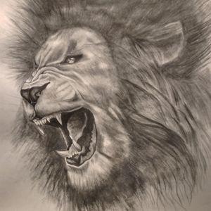 A lion's roar -  Isaacwilliams778
