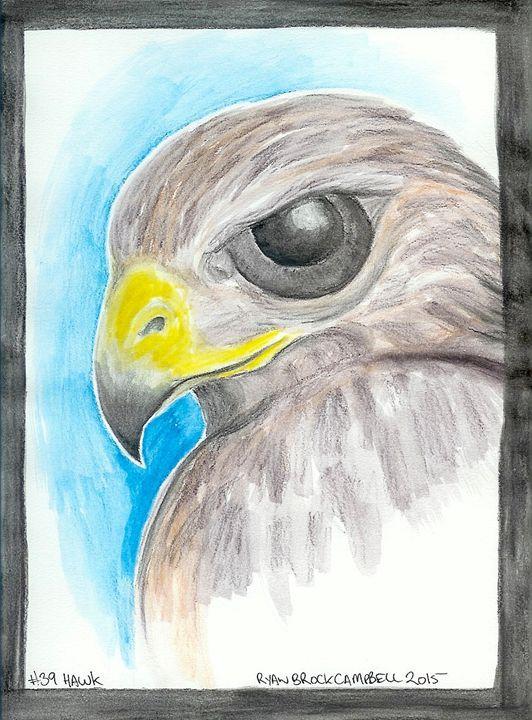 #39 Hawk - Ryan Brock Campbell