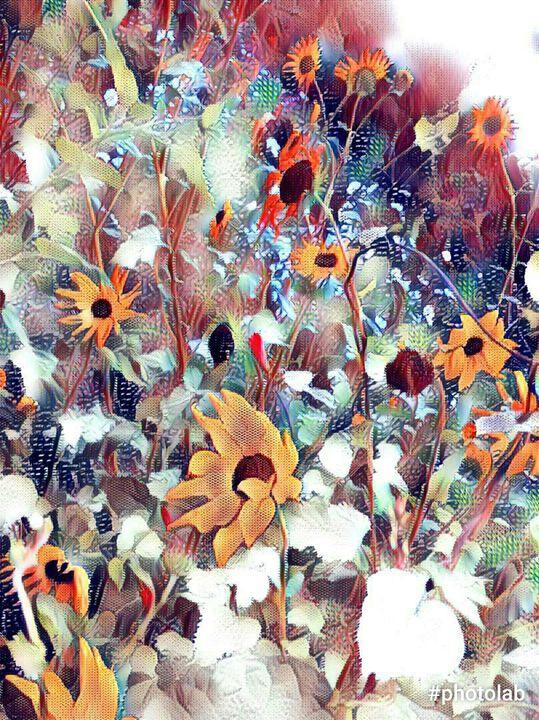 Freedoms flowers - Ruiz Design