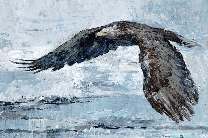 bald eagle -  Ferrum.artist.ka