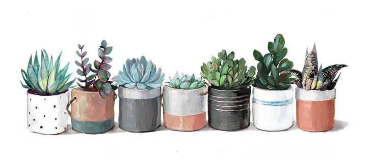 cacti and succulents -  Ferrum.artist.ka
