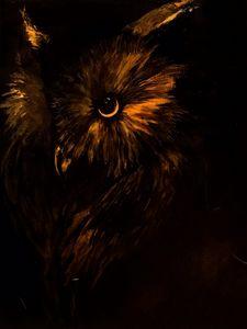 Gold Owl
