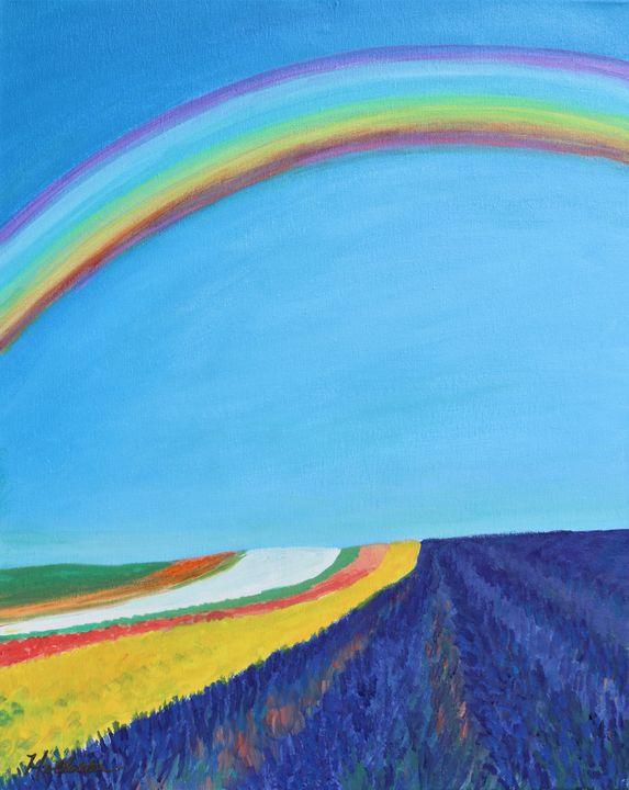 Rainbows - A Splash of Color