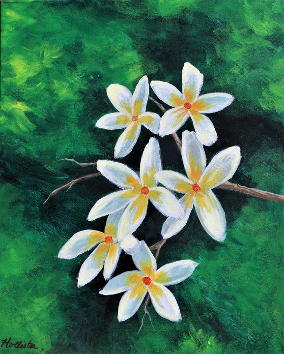 Plumeria - A Splash of Color
