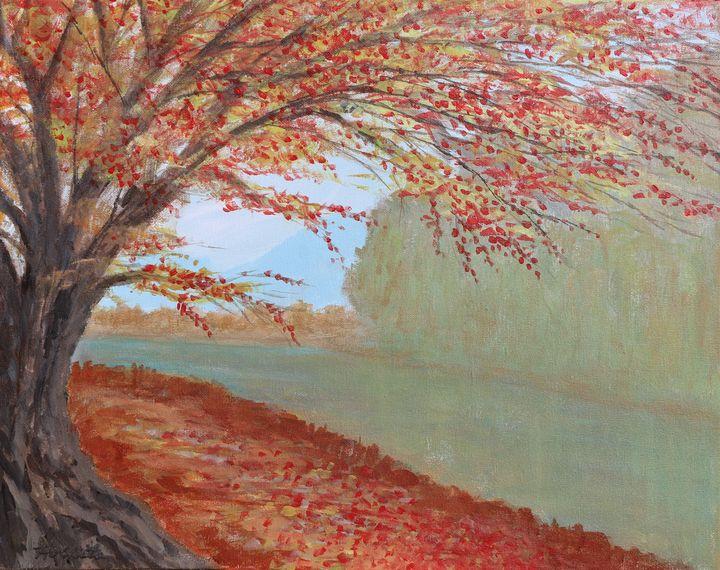 Misty River - A Splash of Color