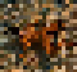 Underwater - Male Art ToM302
