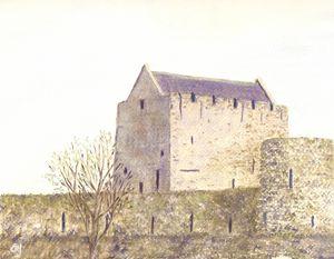 Athenry Castle 2