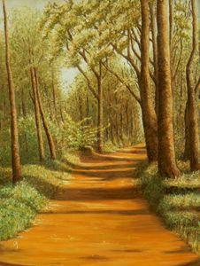 Clarinbridge Woods