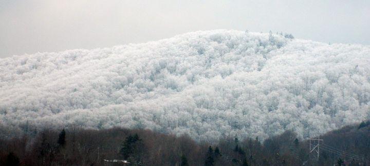Snowy Mountain Top - Rachel's Photos & Drawings