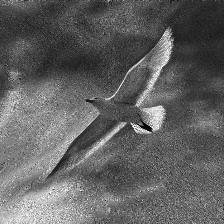 Memories of flying - Marko Stojanovic