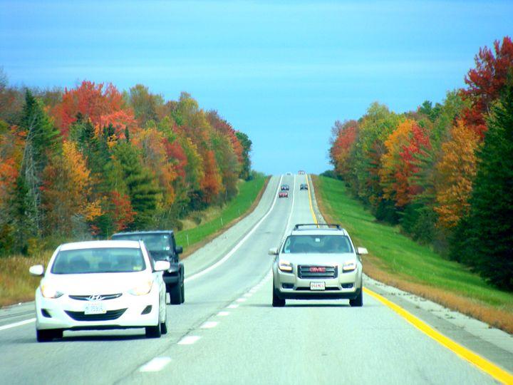 Drive at Fall Season - Priyanka