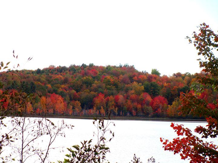 Color of Fall - Priyanka