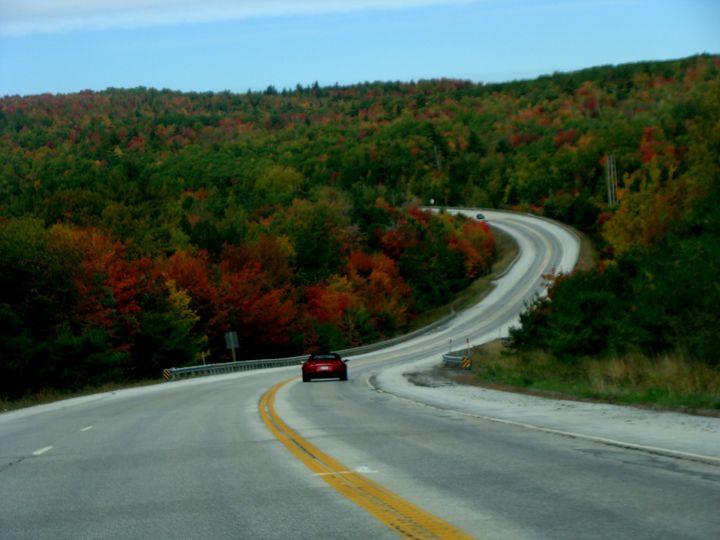 Fall Season Drive - Priyanka