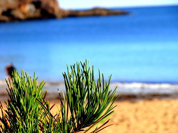 White Sand Beach - Priyanka
