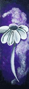 Galaxy of Flowers