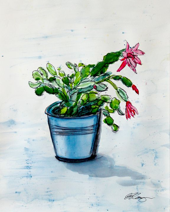 Christmas Cactus in a Tin Pot - Erin Hollon Fine Art and Illustration