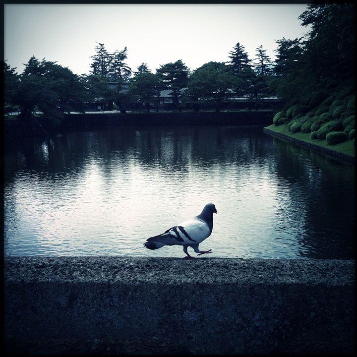 walkn' - hiroko tanaka