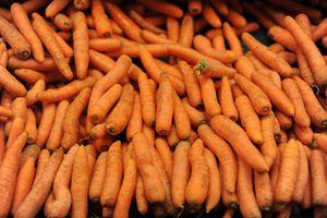 The Carrots - hiroko tanaka