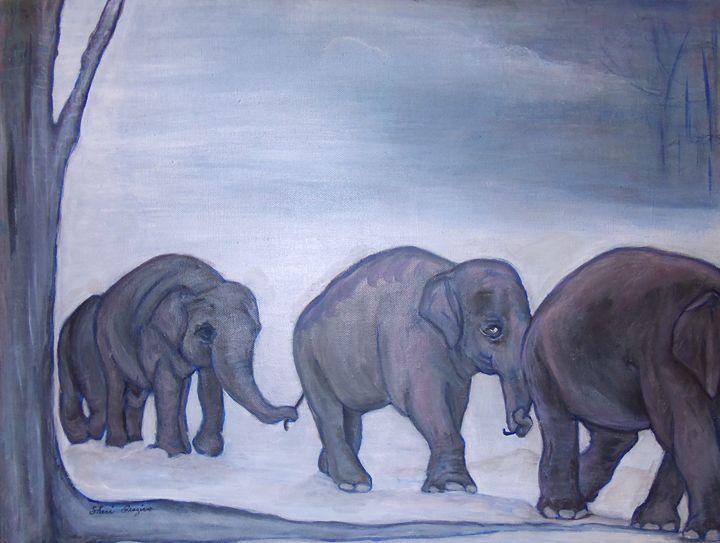 Counting Elephants In My Sleep - Cheryl Graziano
