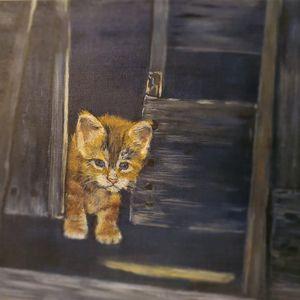 Barn Kitten - Cheryl Graziano