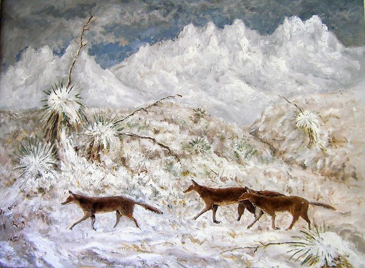 Coyotes in the Snow - GreenGallery