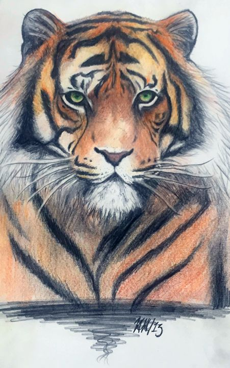 Tiger - Johanna Hendrickson