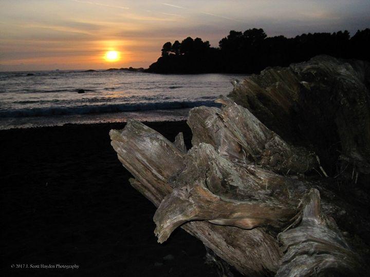 Driftwood Sunset - J. Scott Hayden