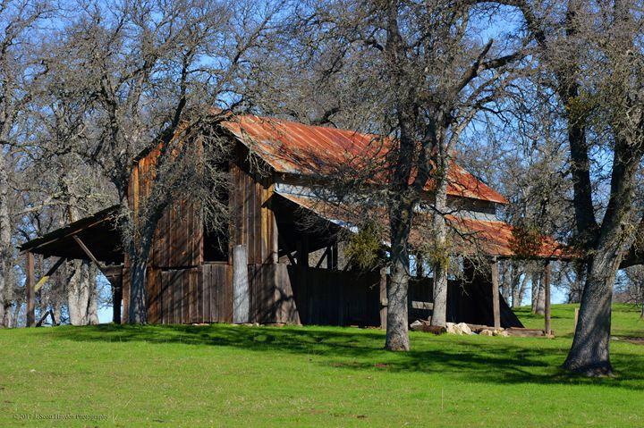 Calavares Barn - J. Scott Hayden