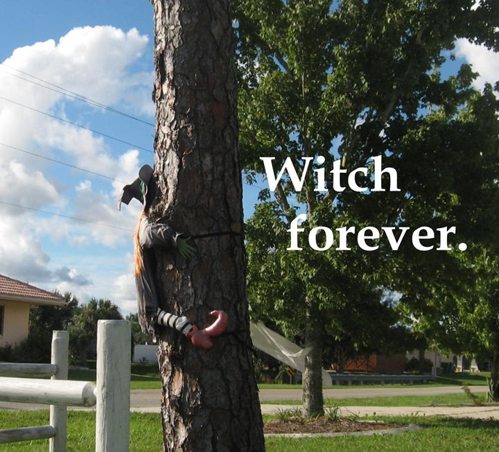 Witch forever. - My Evil Twin