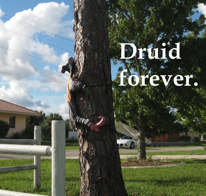 Druid forever. - My Evil Twin