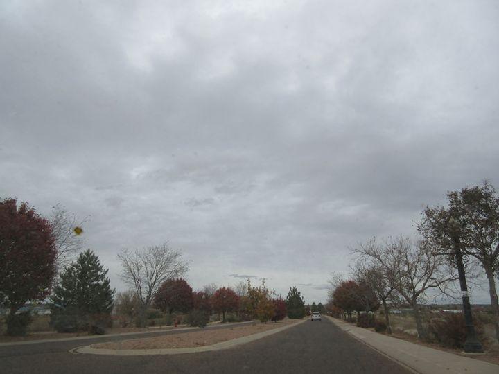 A Stately Arizona Street - My Evil Twin