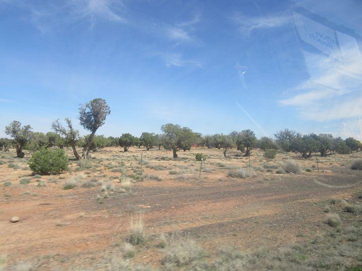 Concho Landscape - My Evil Twin