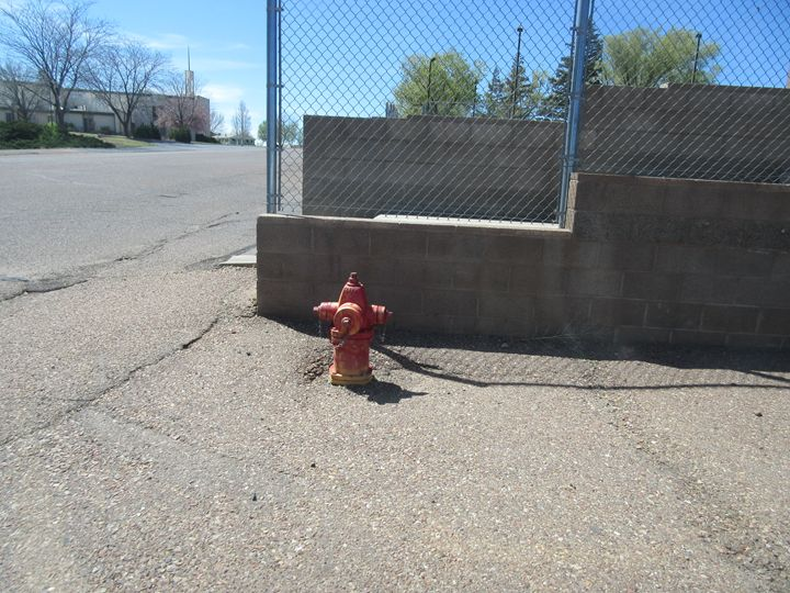 Fire Hydrant - My Evil Twin