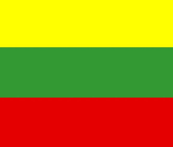 Lithuania Flag - My Evil Twin