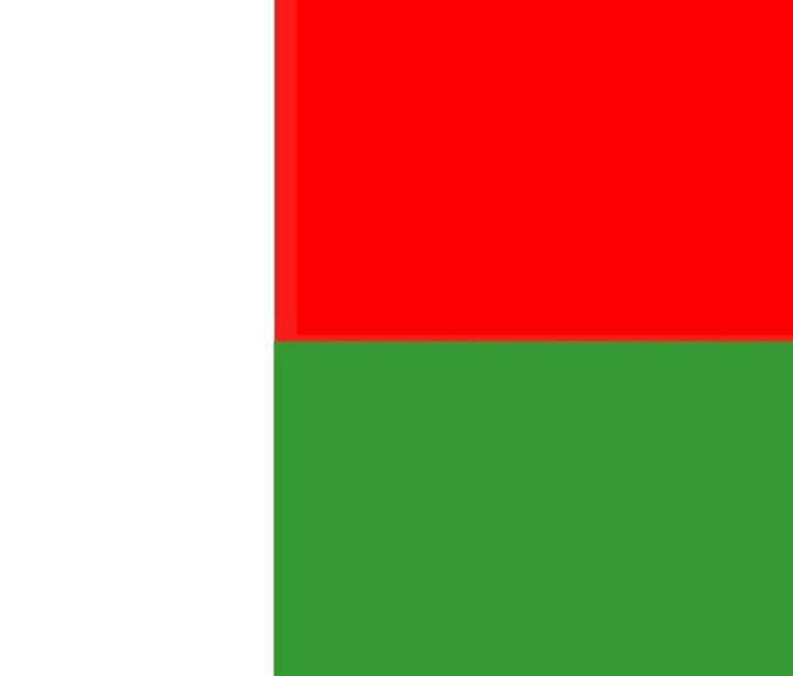 Madagascar Flag - My Evil Twin