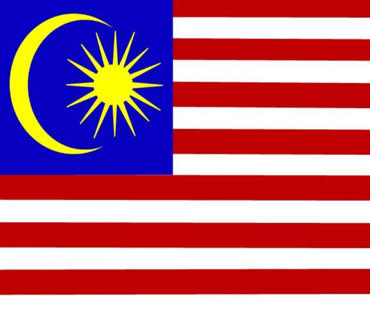 Malaysia Flag - My Evil Twin