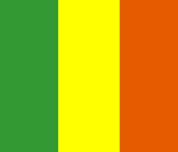 Mali Flag - My Evil Twin