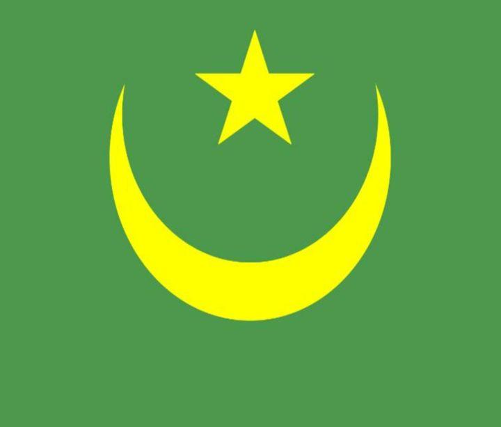 Mauritani Flag - My Evil Twin