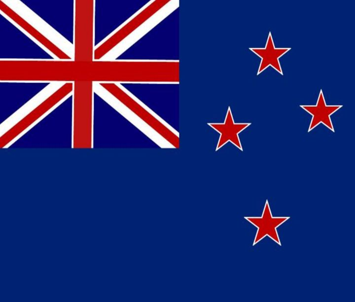 New Zealand Flag - My Evil Twin