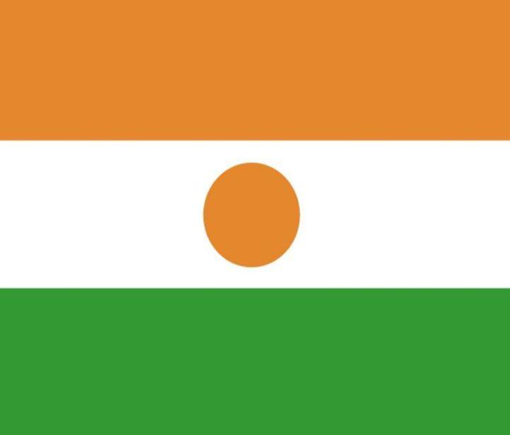 Niger Flag - My Evil Twin