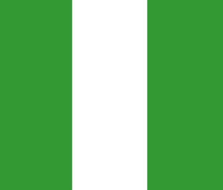 Nigeria Flag - My Evil Twin